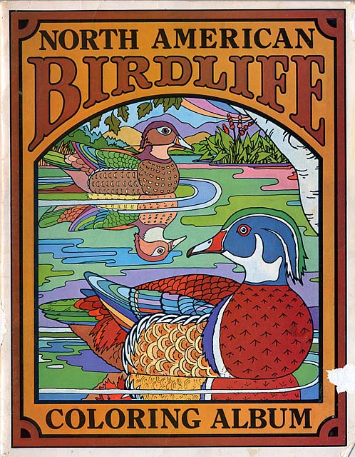 North American Birdlife